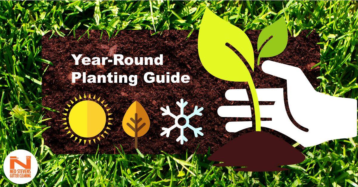 Ned Stevens Planting Guide facebook preview